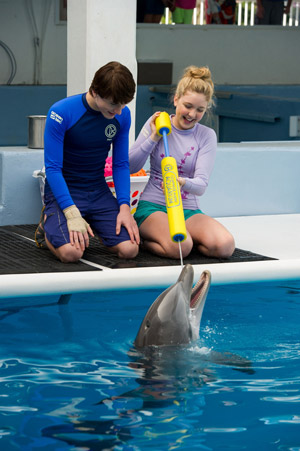 Dolphin Tale 2 Stars Nathan Gamble and Cozi Zuehlsdorff