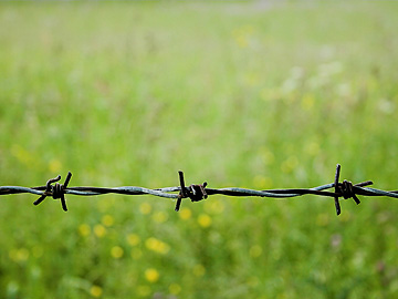 Barbed Wire Cutting