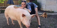 Phoebe Dykstra and Esther, the Pig
