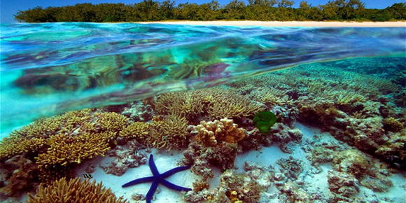 australia-great-barrier-reef