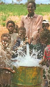 Malawi Africa Water Hole