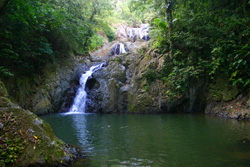 Argyle Falls - Tobago Waterfalls