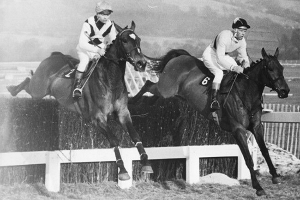 Arkle and Mill House in the Cheltenham Gold Cup - 1964