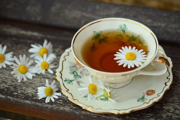 daisy herbal tea
