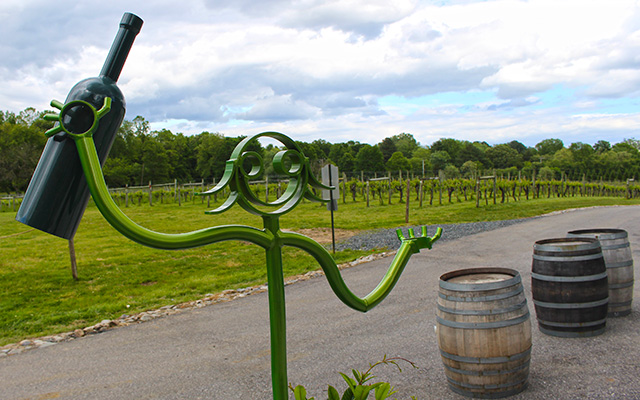 great frogs winery annapolis