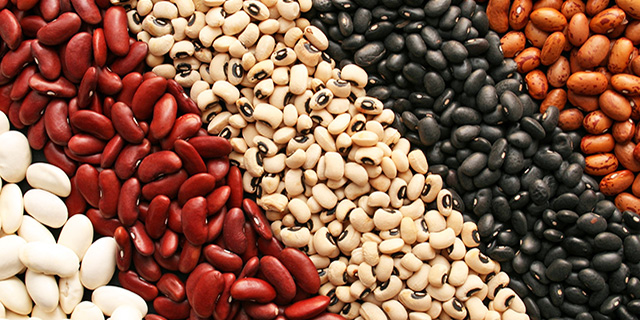 dried beans survival