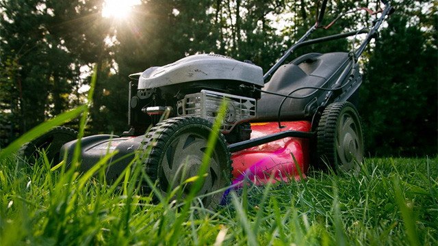 tools for the perfect lawn