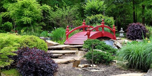 natural landscaping backyard ideas