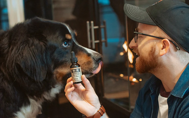 BMD vs CBD - NOooo - treats for dogs