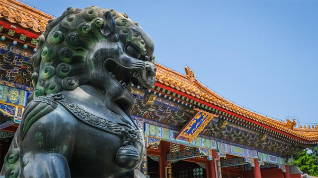 Lucky in China - Lion Statue