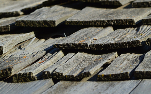 your roof shingles